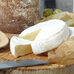 Dosen Bistro Backhaus Brie (250g)