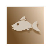 piatto-principale-di-pesce-trek-lt-it-105